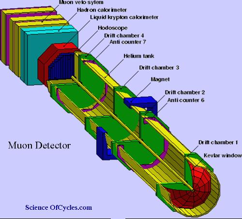 muon-detector1